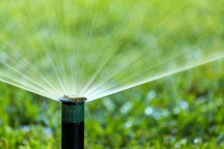 Garden automatic Irrigation system spray watering lawn.