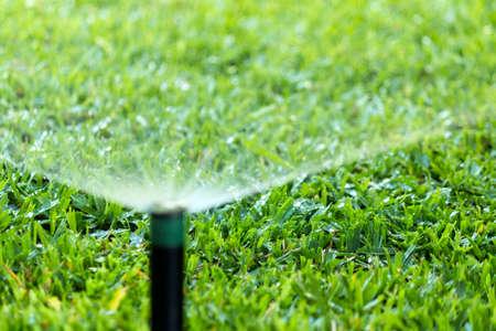 庭自動灌漑システム スプレーの芝生の水まき。 写真素材