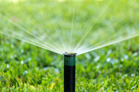Garden automatic Irrigation system spray watering lawn.