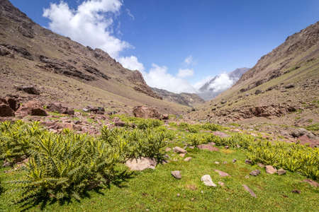 Toubkal national park, the peak whit 4,167m is the highest in the Atlas mountains and North Africa, panoramic view. Morocco Stock Photo