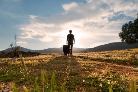 arrodillarse: Silueta del hombre y su fiel compa�ero en la puesta del sol en el prado en flor de primavera en un d�a soleado