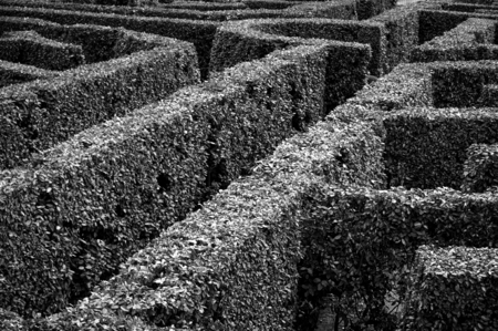 Labyrinth - Black an white