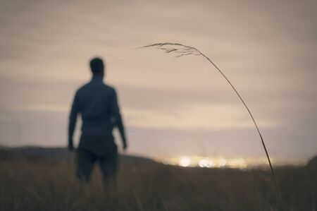 man in field: Abstract silhouette of man field with city lights background