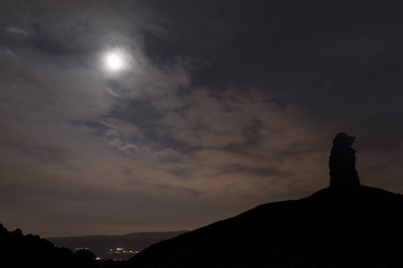 Silhouette of the dog under the light of the moon on top of the mountain. Stock fotó