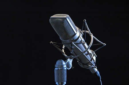 Profesional microphone isolated on black�