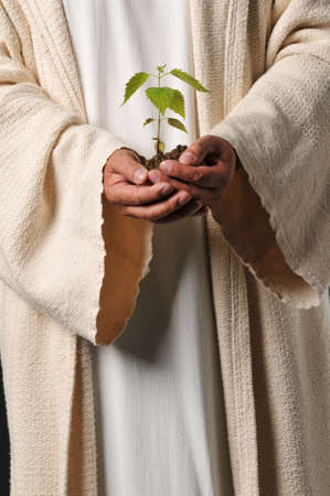 Jesus hands holding a plant as a symbol of you reap what you sow Stock Photo - 8037893