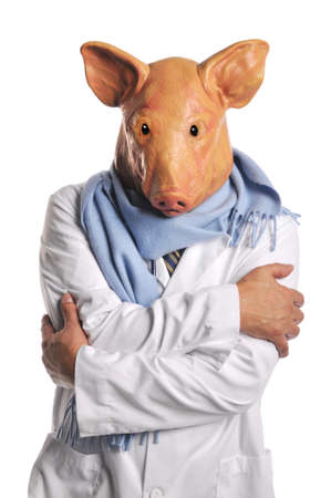 Swine Flu metaphor showing a doctor with pig's head isolated on white Stock Photo - 8055962