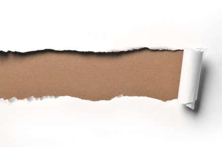 gescheurd papier: geript Witboek tegen een groene achtergrond