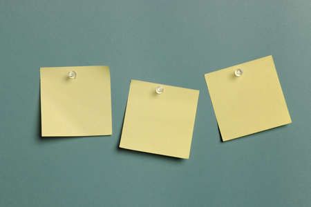 Sticky Notes isolated on a green background