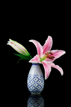 Lilium Stargazer Stargazer Lily flower isolated on black background Stock Photo