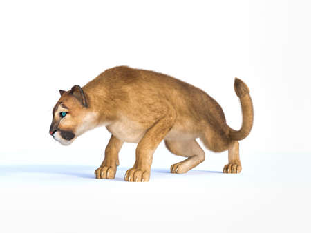 3d rendering  of a hunting puma isolated on white Banque d'images - 99821498