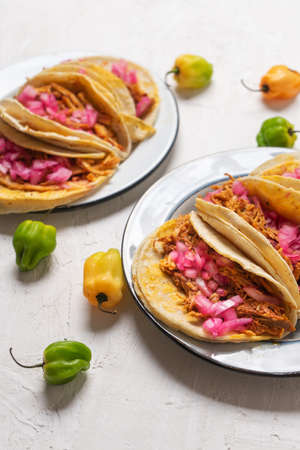 Traditional mexican pork tacos called cochinita pibil on white background