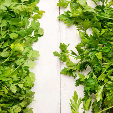 Bunch of fresh cilantro and parsley on white background Banque d'images