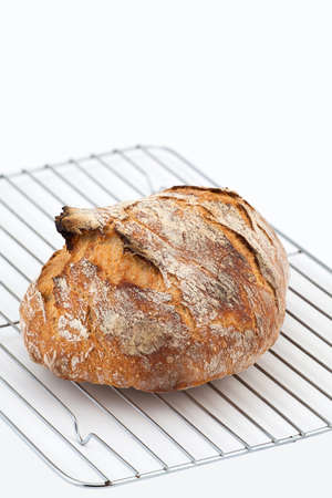 life loaf: Loaf of crusty bread