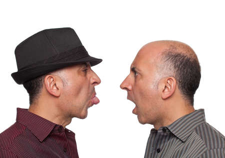 sneer: Identical twins fighting Stock Photo