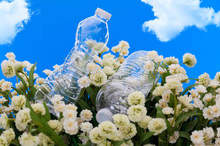 ecological problem: Concept of plastic bottles discarded in a park
