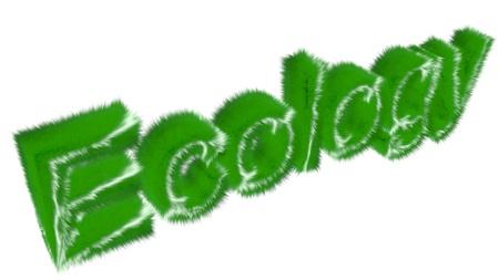 Ecology photo