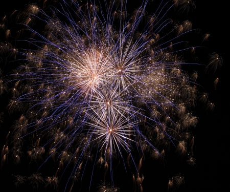 evenings: Fireworks in the nightsky
