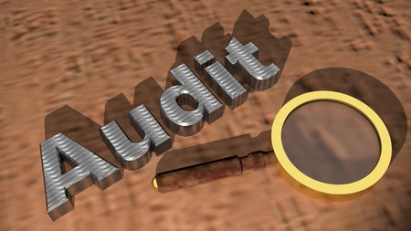Audit with magnifier