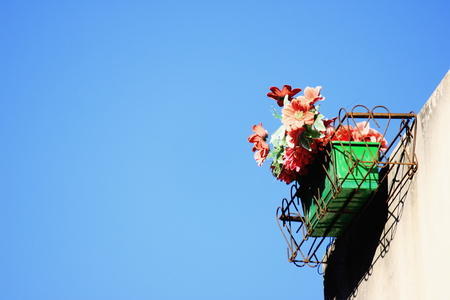 sensations: Flowerbox on blue sky