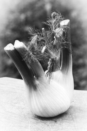 Wonderful fennel