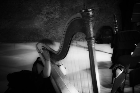 De harp wachtend te worden gespeeld