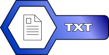 An icon for TXT files with an hexagonal shape - vector 일러스트