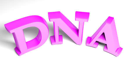 DNA pink purple write on white background - 3D rendering illustration