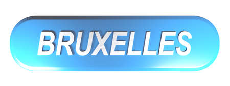 BRUSSELS blue rounded rectangle push button - 3D rendering illustration