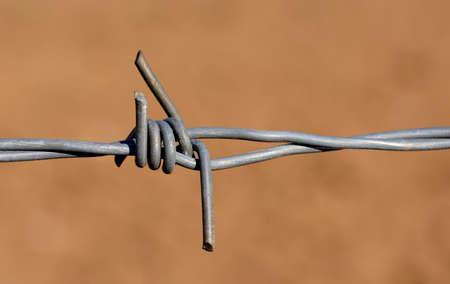 macro barbed wire detail 版權商用圖片