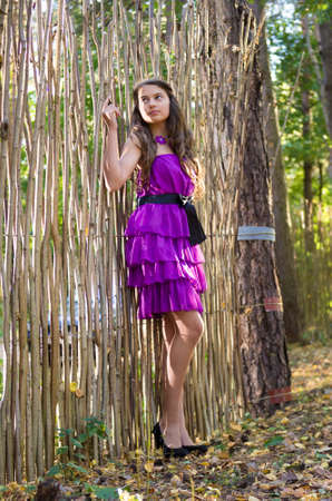 nice girl in violet dress posing near wicker fence in the forest photo