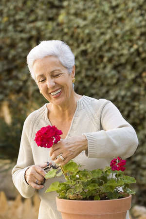 Senior lady pruning her plants Stock Photo - 854797
