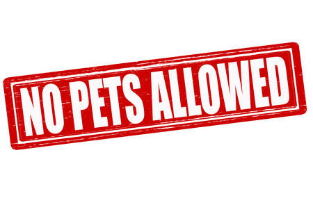 permitted: Stamp with text no pets allowed inside,vector illustration