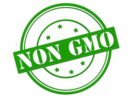 non: Stamp with text non GMO inside, vector illustration