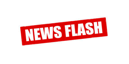 news flash: Rubber stamp with text news flash inside, vector illustration
