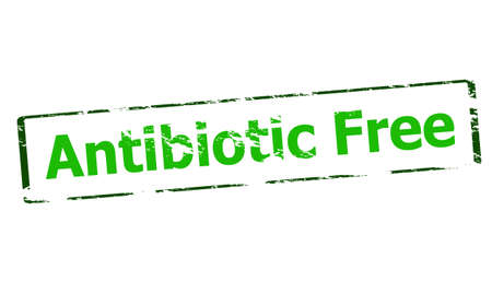 antibiotic: Rubber stamp with text antibiotic free inside, vector illustration Illustration