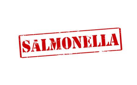 monella: Sello de goma con la palabra de la salmonela en el interior, ilustraci�n vectorial