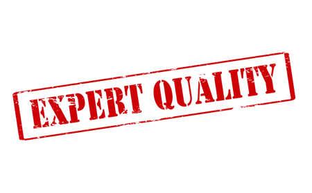 experte: Stempel mit Text Expertenqualit�t im Inneren, Vektor-Illustration