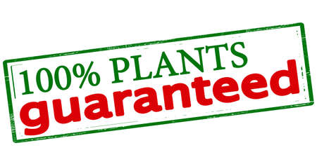vegetal: Rubber stamp with text one hundred percent plants guaranteed inside, vector illustration Illustration