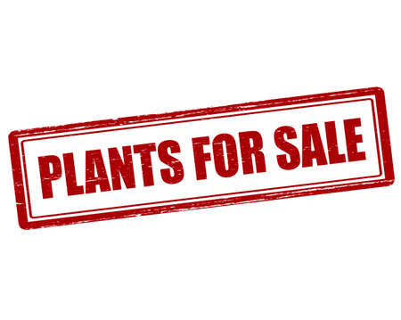 vegetal: Rubber stamp with text plants for sale inside, vector illustration Illustration
