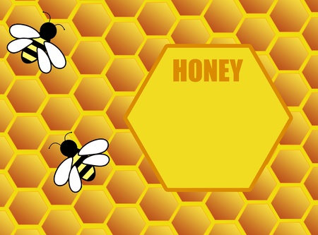 Honeycomb background with bee and space for text, vector illustration Vector