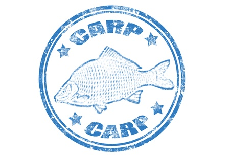 carp fish: grunge rubber stamp of a carp fish and the word carp written inside,vector illustration Illustration