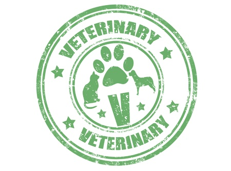 veterinary symbol: Grunge rubber stamp with word veterinary inside,vector illustration Illustration