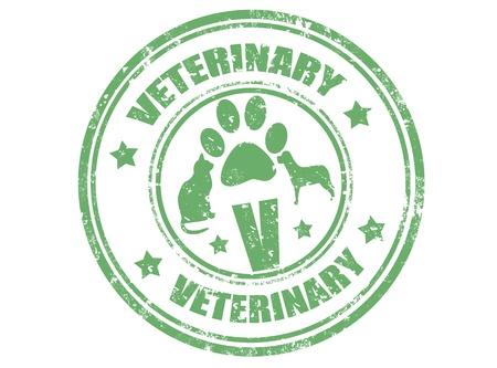 Grunge sello de goma con la ilustración del vector veterinario palabra interior,