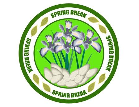 Spring break label Vector