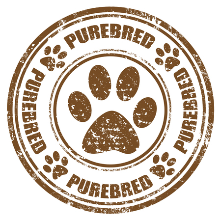 Grunge rubber stamp with word Purebred,illustration Vector
