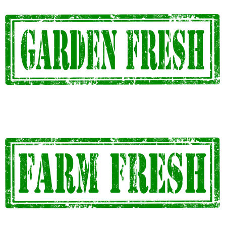 garden fresh: Set of grunge rubber stamps with text Garden Fresh and Farm Fresh,vector illustration Illustration