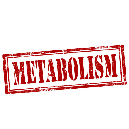 metabolism: Grunge rubber stamp with text Metabolism,vector illustration