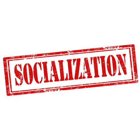 socialization: Grunge rubber stamp with text Socialization,vector illustration Illustration