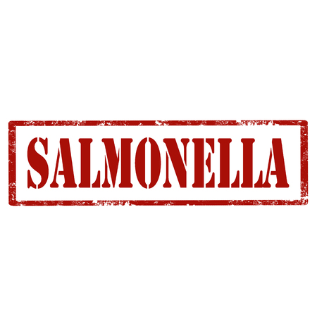 salmonella: Grunge rubber stamp with text Salmonella, illustration
